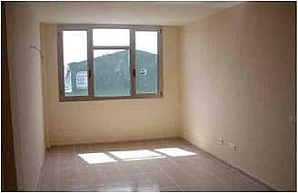 - Piso en alquiler en calle Trebolina, Vecindario - 256999166