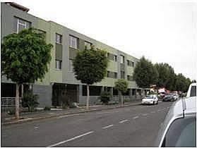 - Piso en alquiler en calle Trebolina, Vecindario - 256999175