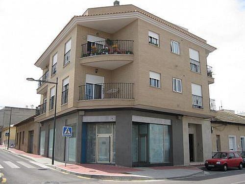 - Local en alquiler en calle Maria del Mar Rodriguez Albadalejo, Algorfa - 188274314