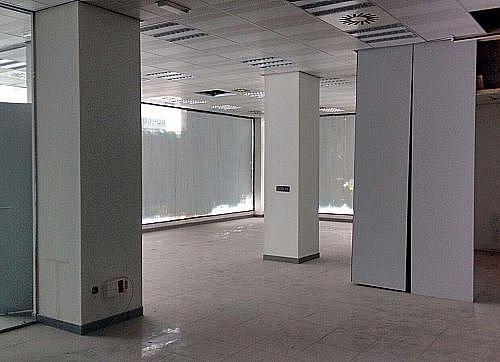 - Local en alquiler en calle Valladolid, Palencia - 219558321