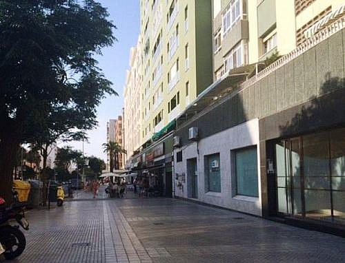 - Local en alquiler en calle Andalucia, Cádiz - 209793605