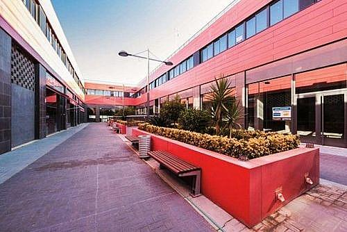 - Local en alquiler en calle Fernando de Los Rios, Armilla - 213883069