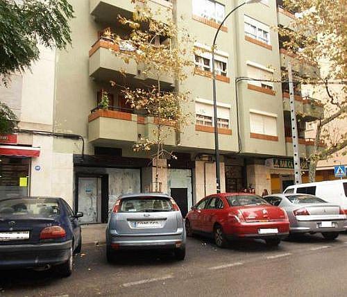 - Local en alquiler en calle Reis Catolics, Llevant en Palma de Mallorca - 188280347