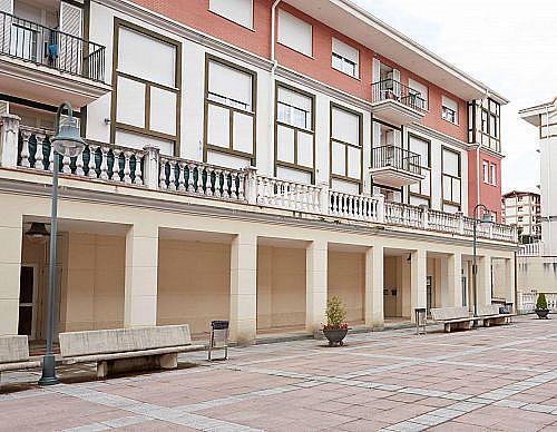 - Local en alquiler en calle Margarita Maturana, Berriz - 210642118