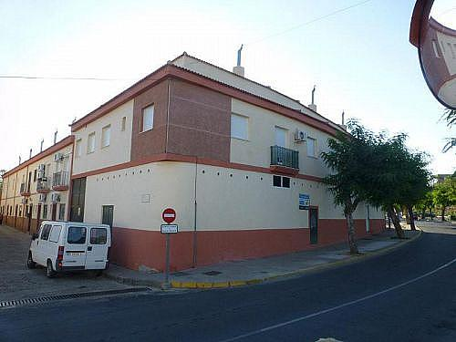 - Local en alquiler en calle Juan Xxiii, Gibraleón - 231406841