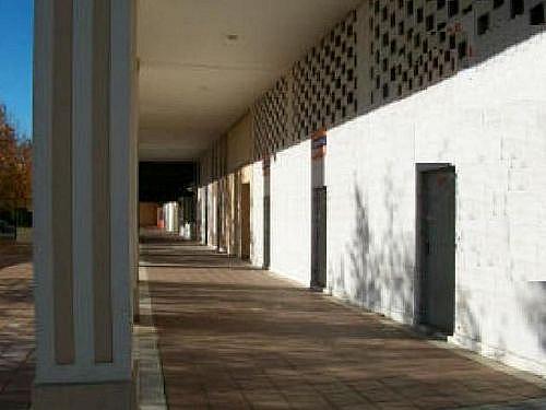 - Local en alquiler en calle Casuarina, Este - Alcosa - Torreblanca en Sevilla - 188289368