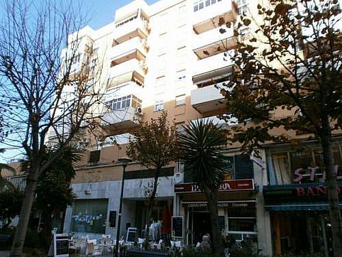 - Local en alquiler en paseo De Los Tilos, Cruz de Humilladero en Málaga - 195643959
