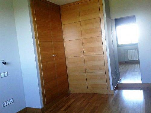 - Piso en alquiler en calle Euterpe, Canillejas en Madrid - 208168917