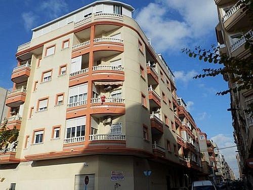 - Local en alquiler en calle Huerto, Torrevieja - 209791622