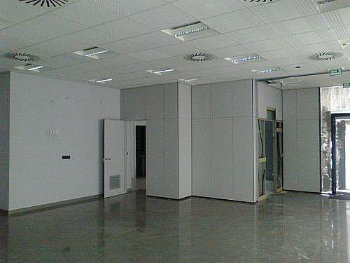 - Local en alquiler en calle Concepcion Arenal, Miranda de Ebro - 210640789