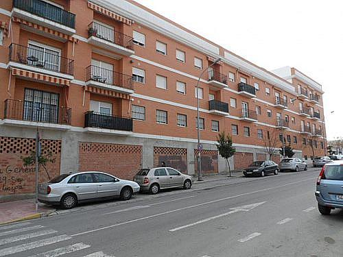 - Local en alquiler en plaza De Toros, Écija - 210641713