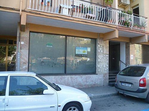 - Local en alquiler en calle Torrent Canari, Premià de Dalt - 210643669