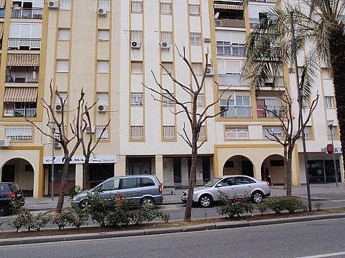 - Local en alquiler en calle De la Constitucion, Alcalá de Guadaira - 210646978