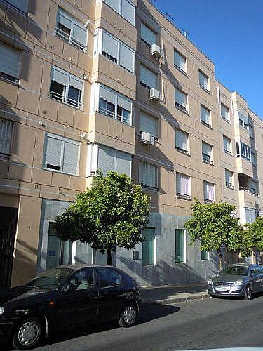 - Local en alquiler en calle Maestro Fernando Sierra, Rural en Jerez de la Frontera - 210647050