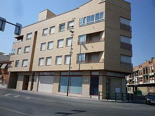 - Local en alquiler en calle Maestro Puig Valera, Santomera - 210647467