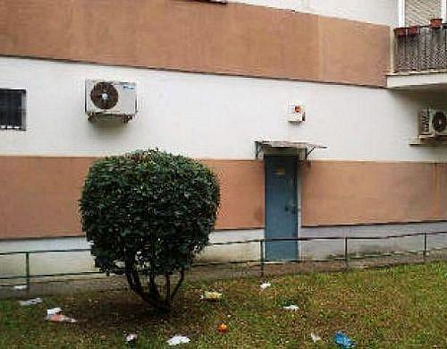 - Local en alquiler en calle Ntra Sra de la Oliva, Distrito Sur en Sevilla - 210649678