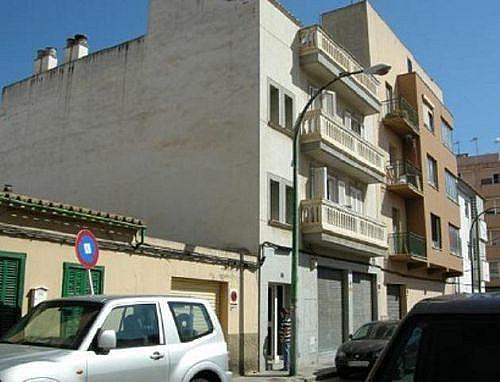 - Local en alquiler en calle Salvador Galmes, Llevant en Palma de Mallorca - 210650200