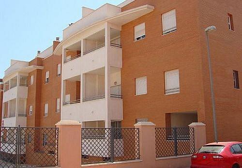 - Piso en alquiler en calle Mosto, Colonia Los Angeles en Almería - 254525280