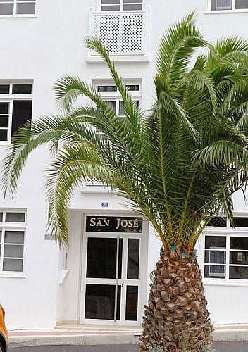- Piso en alquiler en calle General a Puerto, Santiago del Teide - 216579848