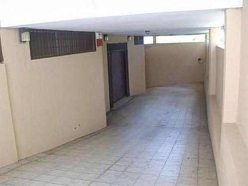 - Local en alquiler en edificio Profesor Peraza de Ayala Natacha, Santa Cruz de Tenerife - 219558999