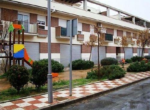- Local en alquiler en calle Ruben Dario, Churriana de la Vega - 220948810