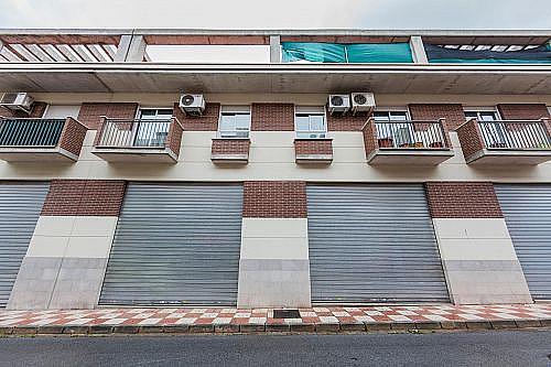 - Local en alquiler en calle Ruben Dario, Churriana de la Vega - 257000018