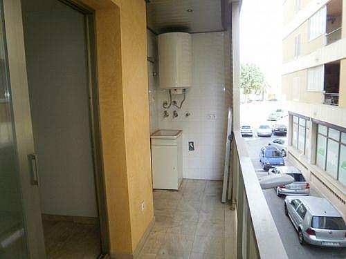 - Piso en alquiler en calle Canaleta, Inca - 223836816
