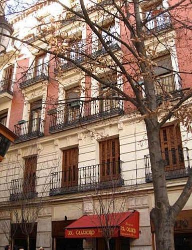 - Piso en alquiler en calle Cl Principe, Cortes-Huertas en Madrid - 231407183