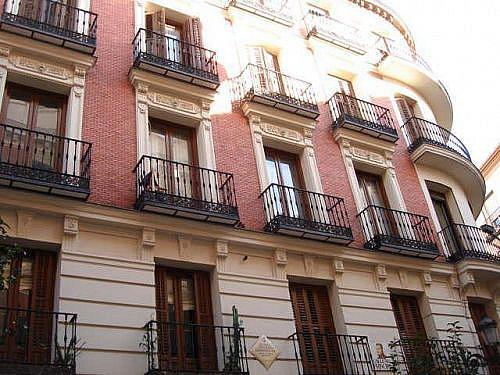 - Piso en alquiler en calle Cl Principe, Cortes-Huertas en Madrid - 231407192