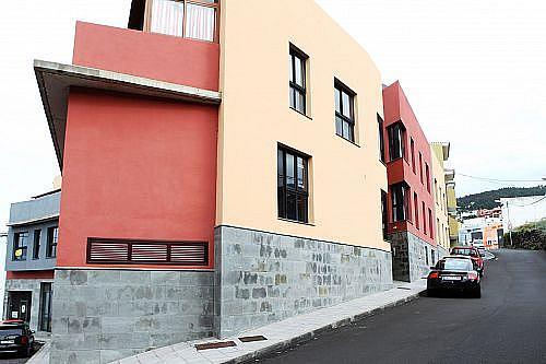 - Local en alquiler en calle La Patita, Tanque (El) - 231409022