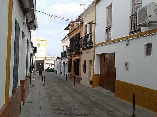 - Dúplex en alquiler en calle Carmen Torres, Pilas - 231409928