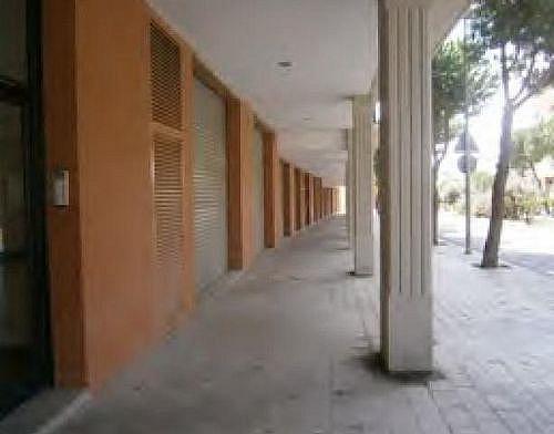 - Local en alquiler en vía Lacetania, Tàrrega - 231410582