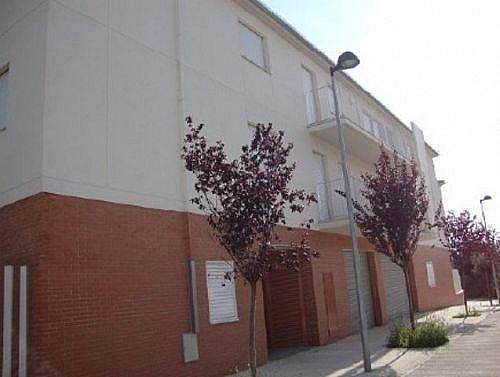- Local en alquiler en calle Cami del Suro, Santa Maria de Vilalba - 231410633