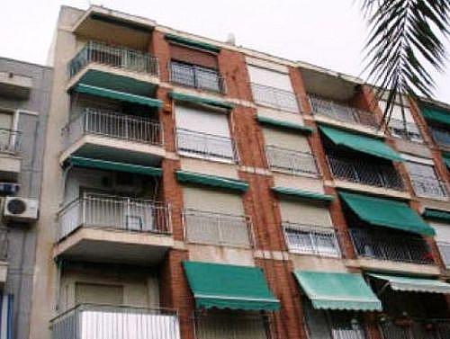 - Piso en alquiler en calle Pablo Picasso, Elche/Elx - 231415310