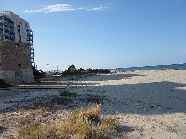 Piso en alquiler de temporada en urbanización Veneziola Golf II Bloque, Manga del mar menor, la - 145809102