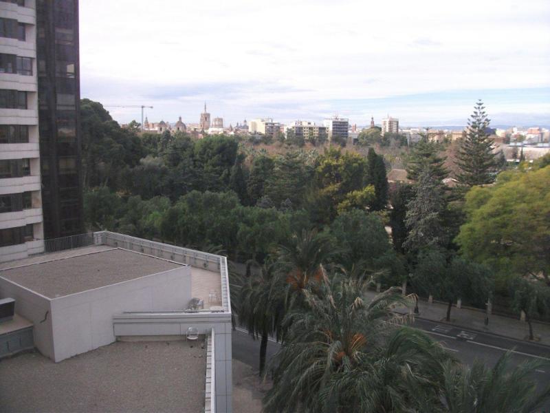 Vistas - Piso en alquiler en calle Blasco Ibañez, El pla del real en Valencia - 106031022