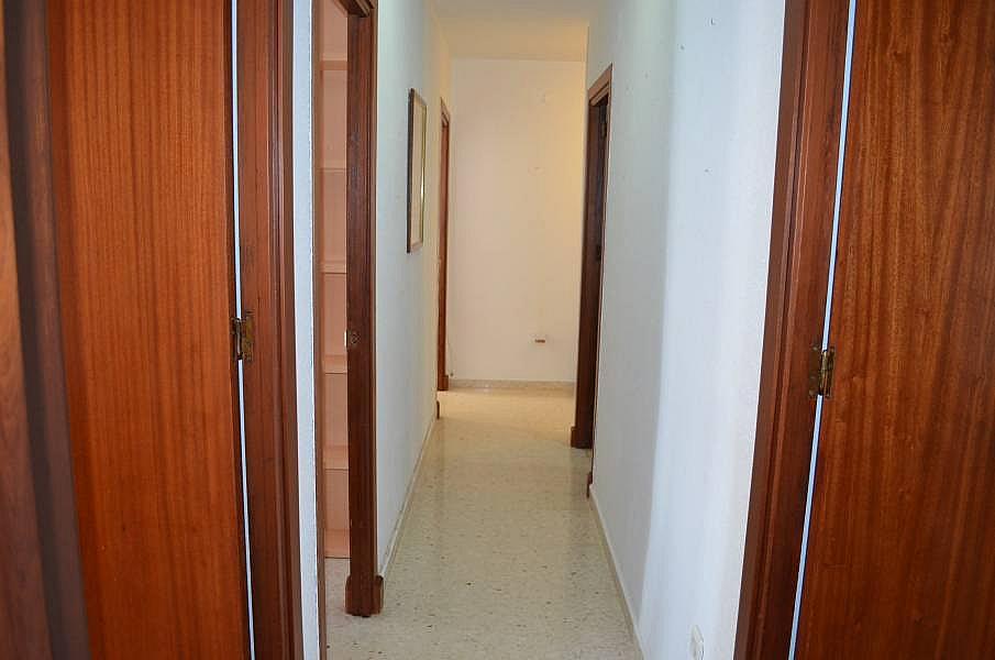 Foto - Piso en alquiler en calle El Carmen, El Carmen en San Fernando - 333932828
