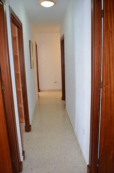 Foto - Piso en alquiler en calle El Carmen, El Carmen en San Fernando - 333932831