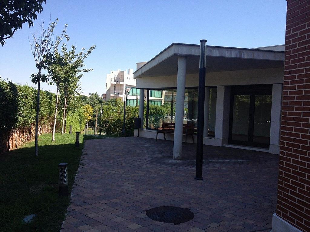 Ático en alquiler en Urb. Prado de Somosaguas en Pozuelo de Alarcón - 274245833