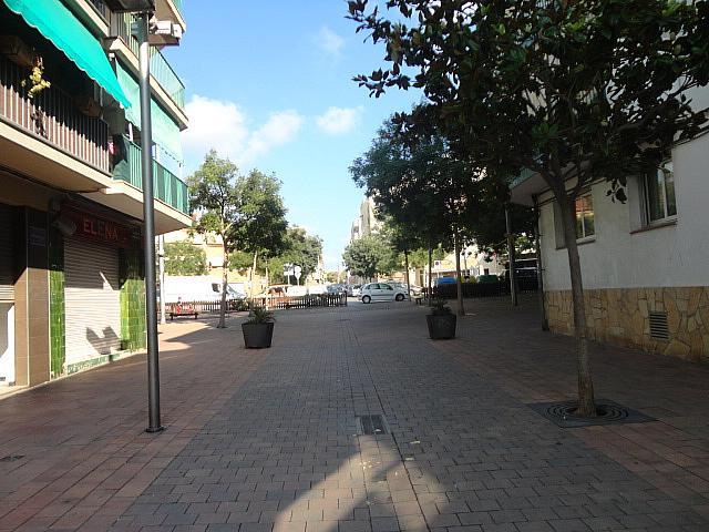 Local comercial en alquiler en calle , Les Roquetes en Sant Pere de Ribes - 320288685