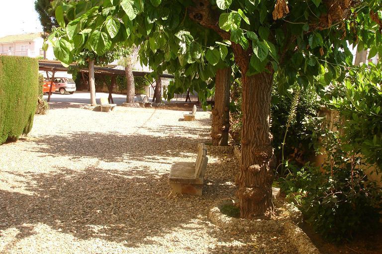 Jardín - Apartamento en venta en calle Julio Cesar, Racó del cèsar en Creixell - 87742659