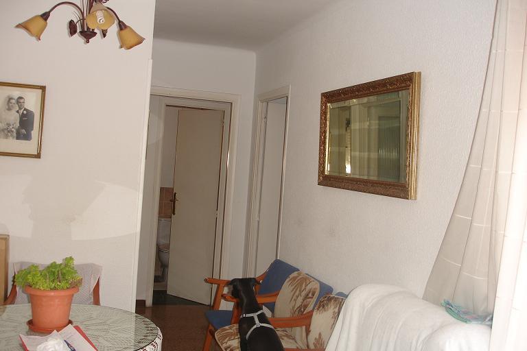 Comedor - Apartamento en venta en calle Julio Cesar, Racó del cèsar en Creixell - 87742669