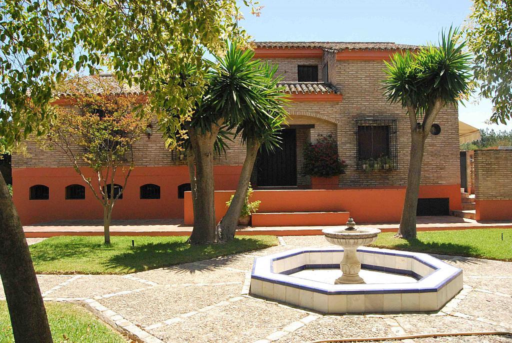Jardín - Chalet en alquiler en Mairena del Aljarafe - 293089617