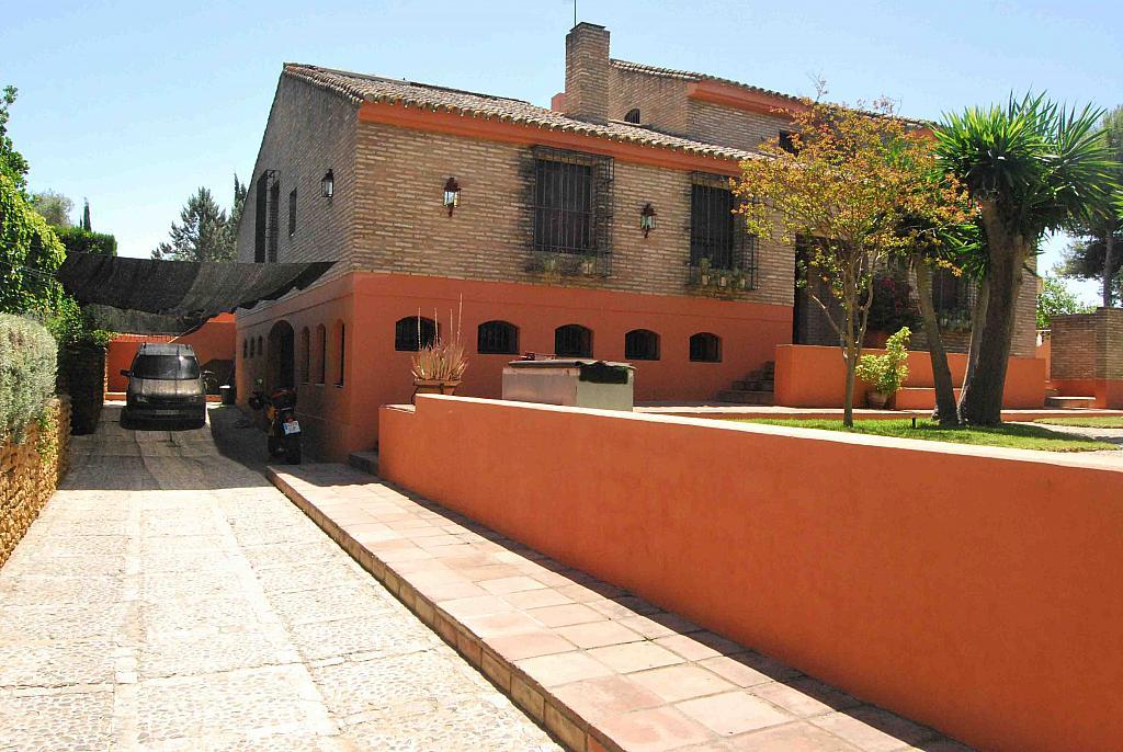 Fachada - Chalet en alquiler en Mairena del Aljarafe - 293089830