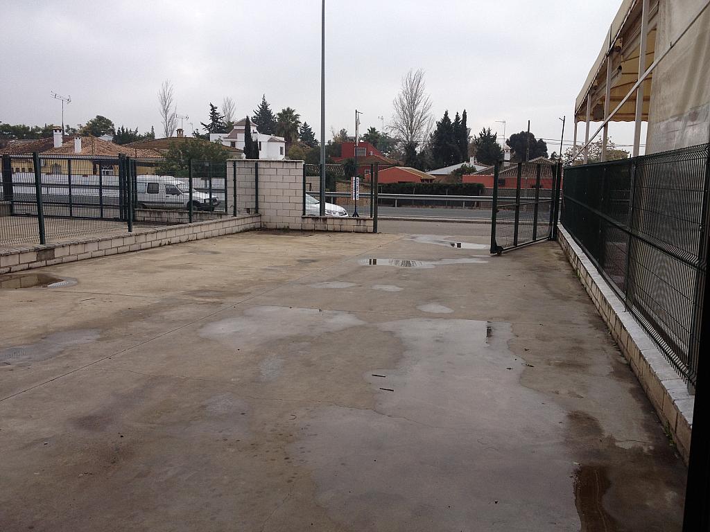 Nave industrial en alquiler en Aznalcázar - 124570414