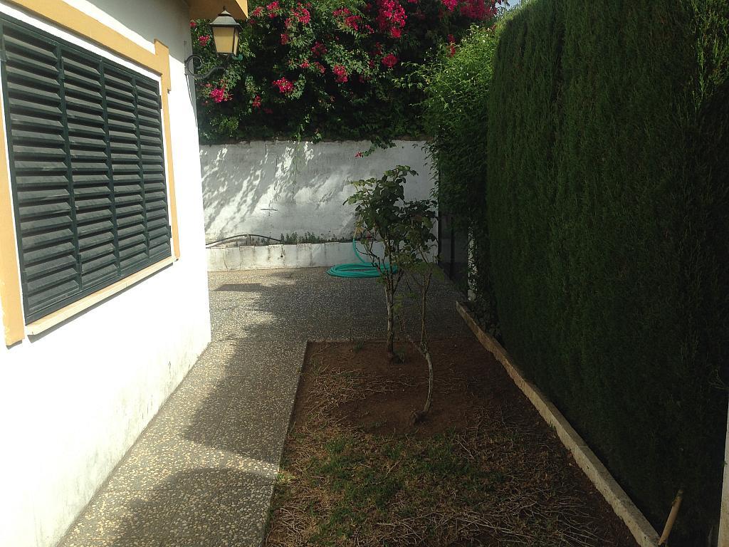 Jardín - Chalet en alquiler en Aznalcázar - 207313773