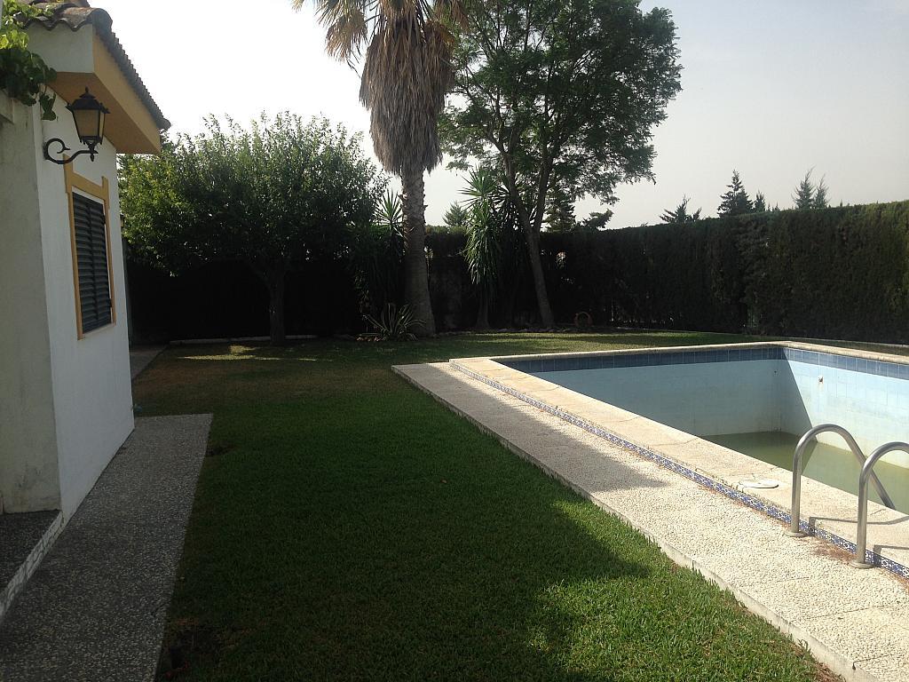 Piscina - Chalet en alquiler en Aznalcázar - 207313814