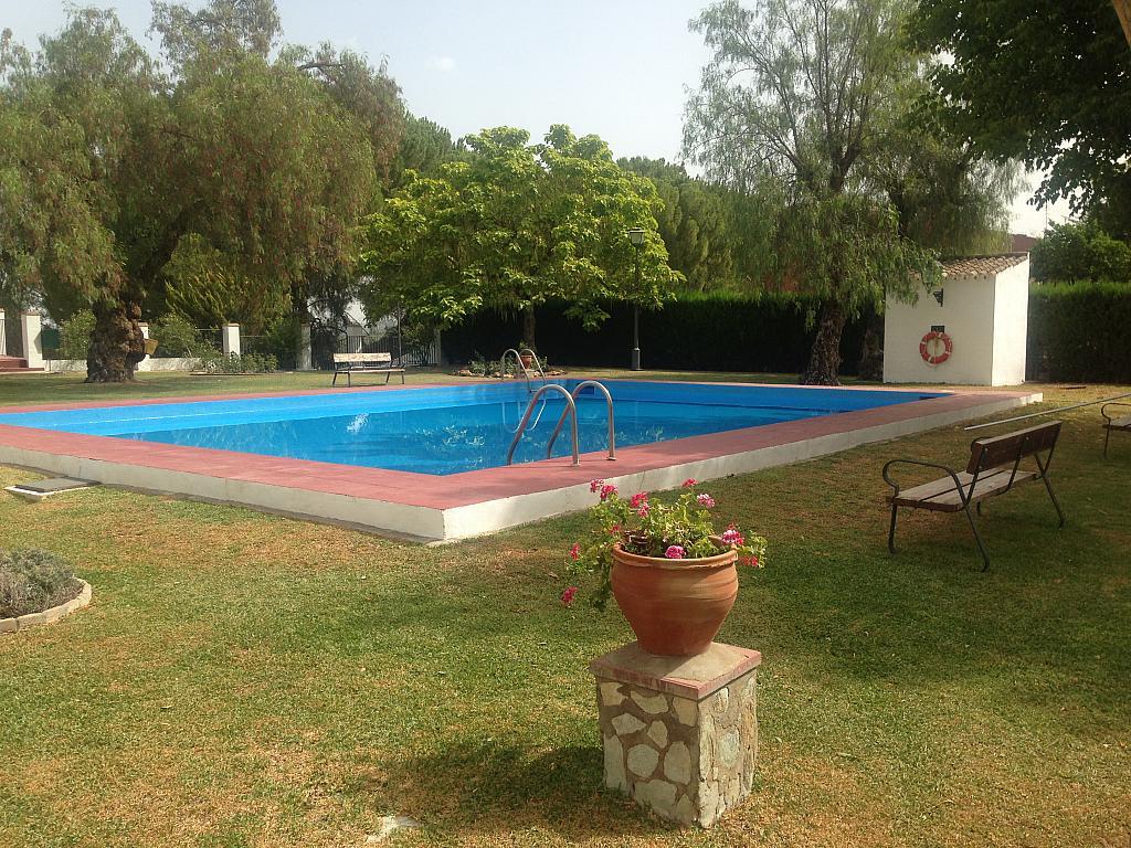 Zonas comunes - Chalet en alquiler en Aznalcázar - 207313903