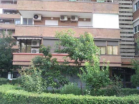 Local en alquiler en calle Tiberiades, Apóstol Santiago en Madrid - 306618452