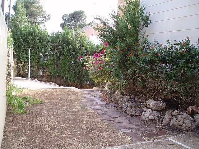 Jardín - Chalet en alquiler en calle San Lorenzo, El Vedat en Torrent - 159980955